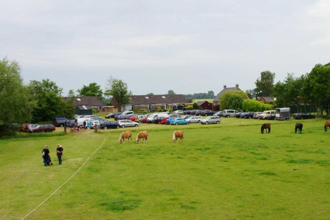 Open Dag Paardenmelkerij de Lage Wierde - Ontdek de kracht van paardenmelk
